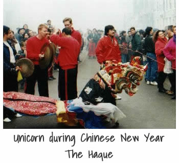 Unicorn dance during Chinese New Year in The Hague